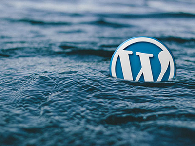 History of WordPress - two